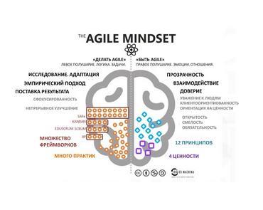 Процесс формирования Agile-мышления